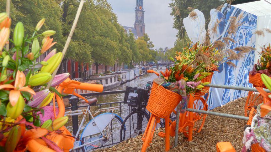 oranges Fahrrad vor holländischer Kulisse im Keukenhof
